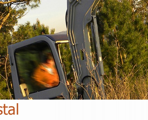 slider-forestal-hidraulica-thtg